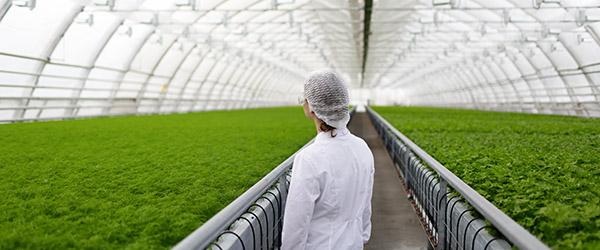 montage-secteur-agriculture-01-01